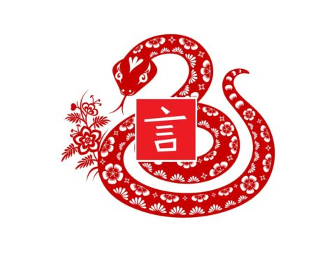 The Year of the Snake at CLI