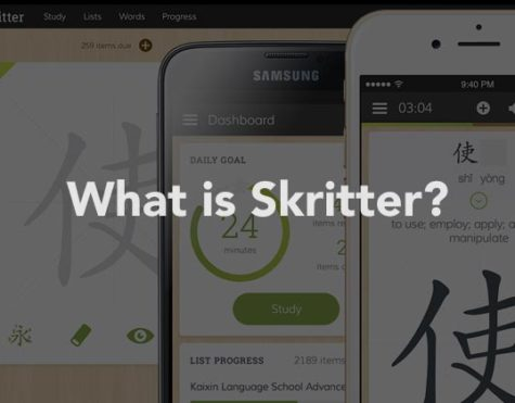 What is Skritter?