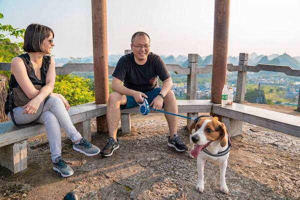 CLI team members relax on a hill top while taking a break from walking a dog