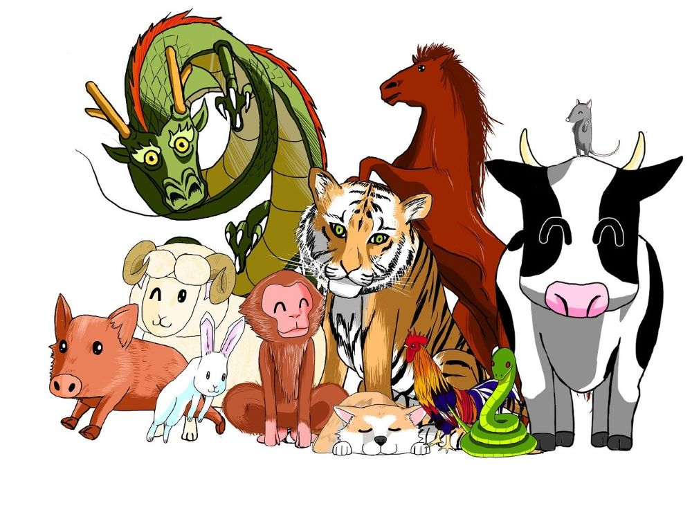 Colorful picture of the 12 Chinese zodiac animals all together