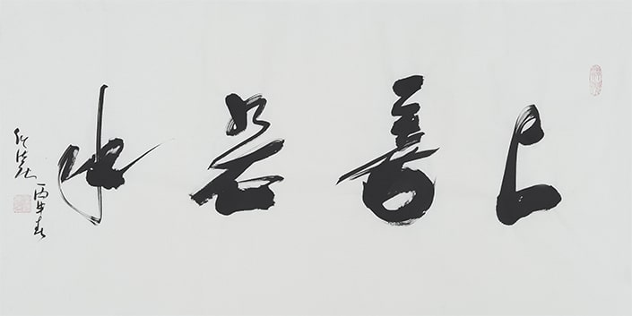 a chinese idiom written in calligraphy
