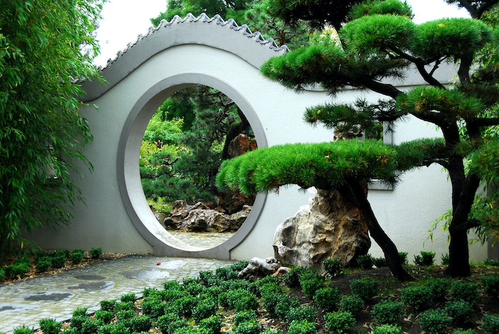 a circular door in a white wall with a pine tree in a traditional Chinese garden